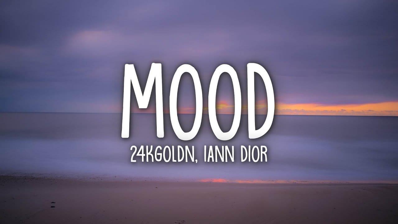 WHY YOU ALWAYS IN A MOOD LYRICS - HOAXXX, 24kGoldn & iann dior